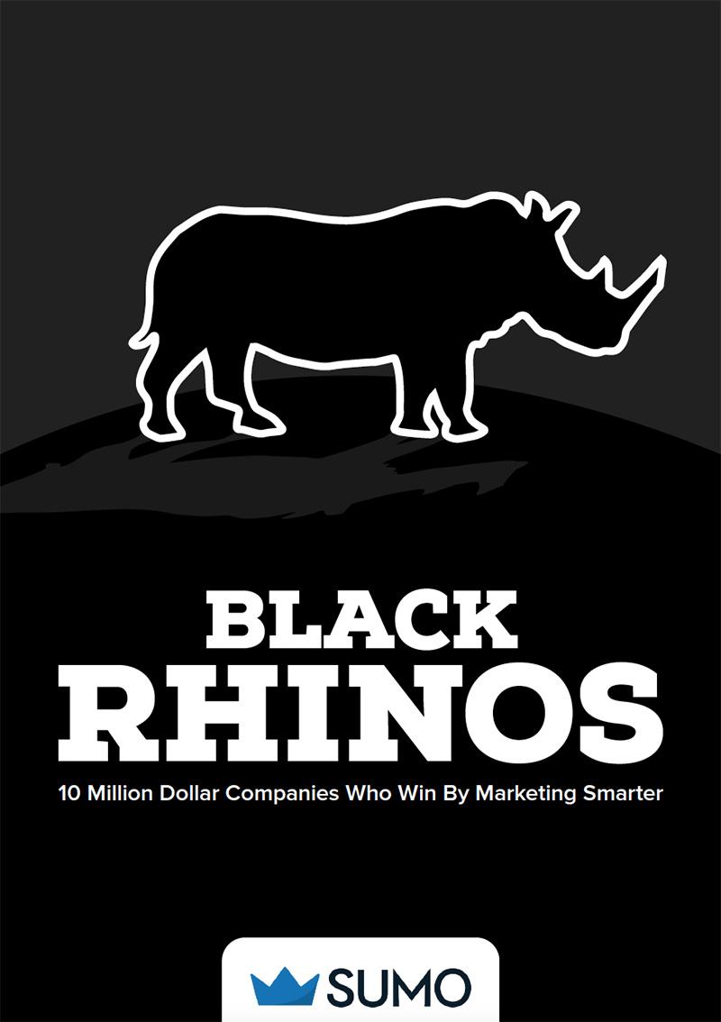 外贸开发信电子书:那些价值超过1000万美元的公司在营销上做对什么才最终赢得了胜利?